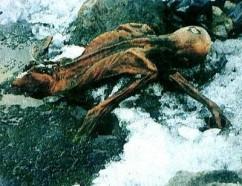 OetzitheIceman-glacier-199109b[1]