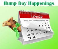 humpday.happenings