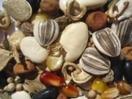 seed-pile-2-1024x768