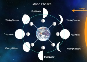 moonphases2