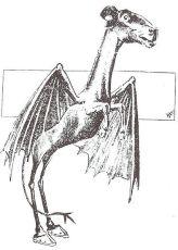 426px-Jersey_Devil_Philadelphia_Post_1909