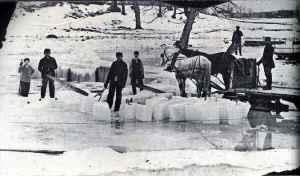 ice20horses