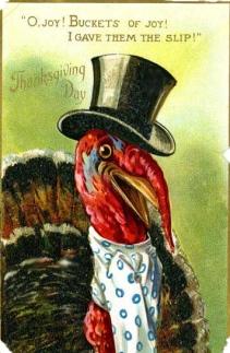 turkeysir