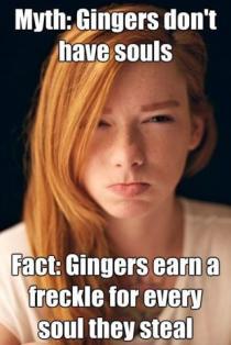 ginger-meme